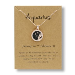 Fashion Rose Gold Charm Necklace Black Night Twelve Constellation Paper Card Alloy Necklace Aquarius